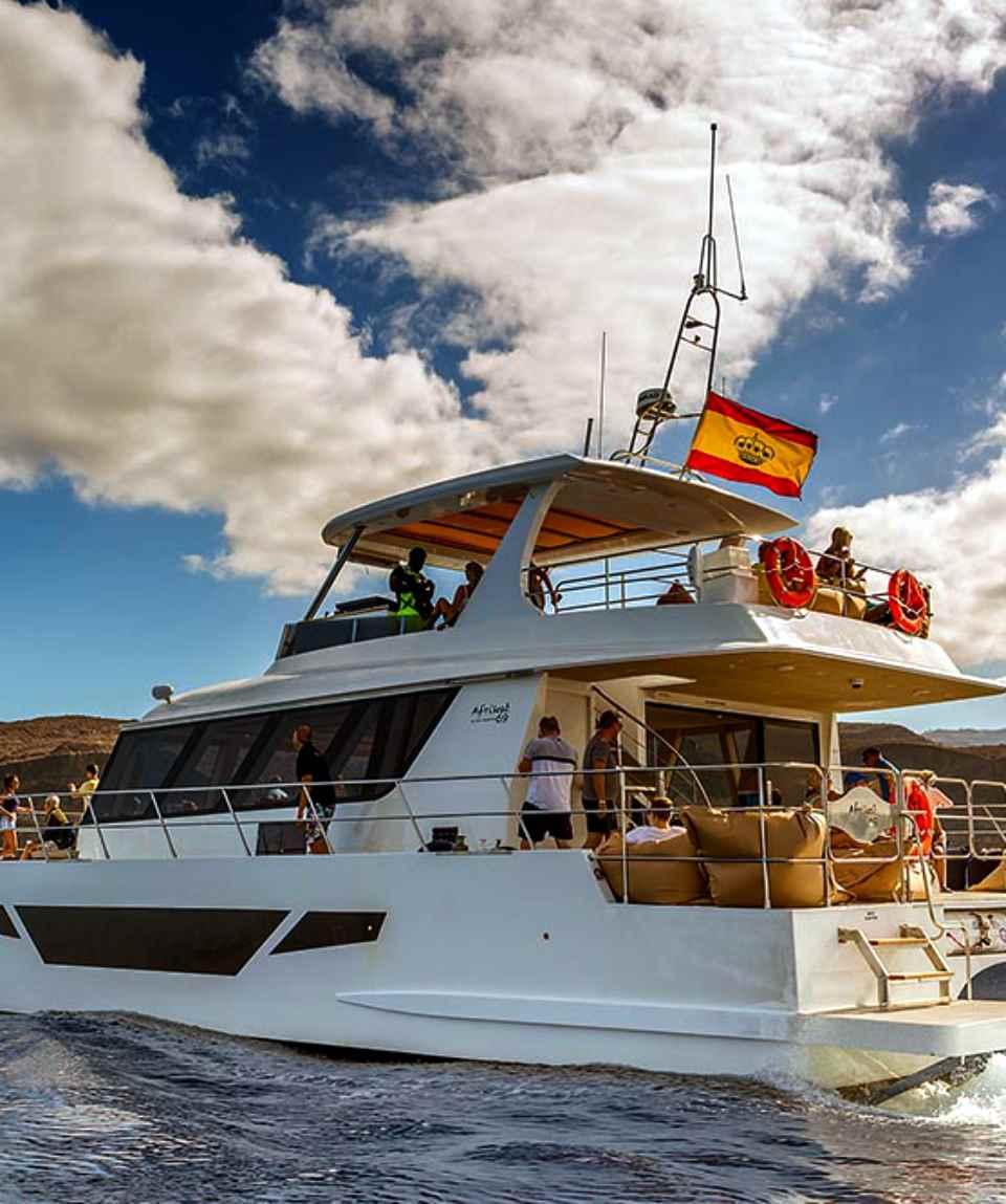 Katamaran Morgen - Catamaran Morning Tour Gran Canaria