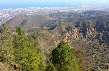 Discover Las Palmas