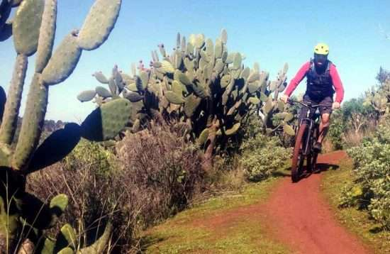 Cruz Grande Mountain Bike Tour Gran Canaria