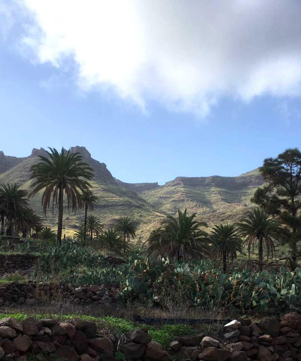 Wandern Mogan nach Veneguera Gran Canaria
