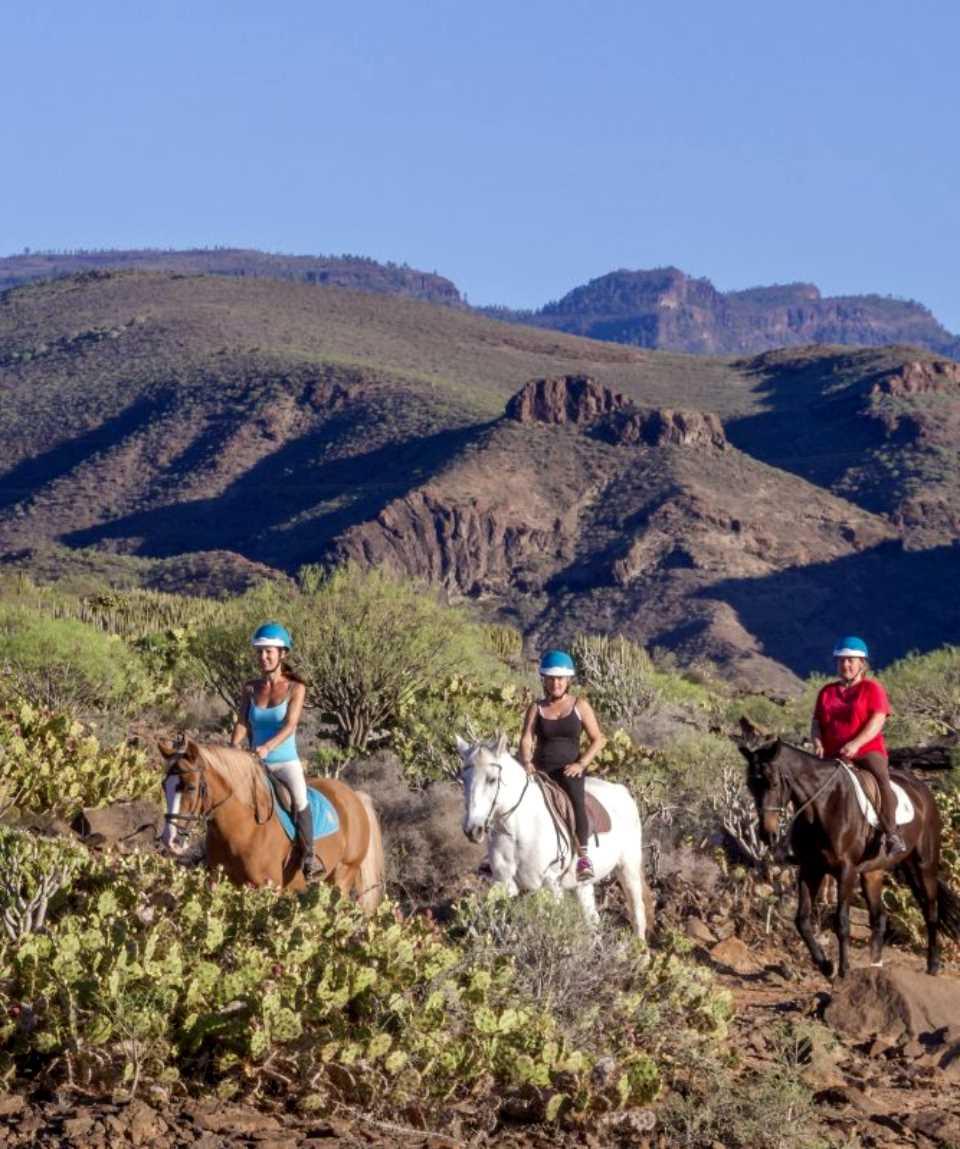Ausritt mit Pferden auf Gran Canaria 1 Stunde