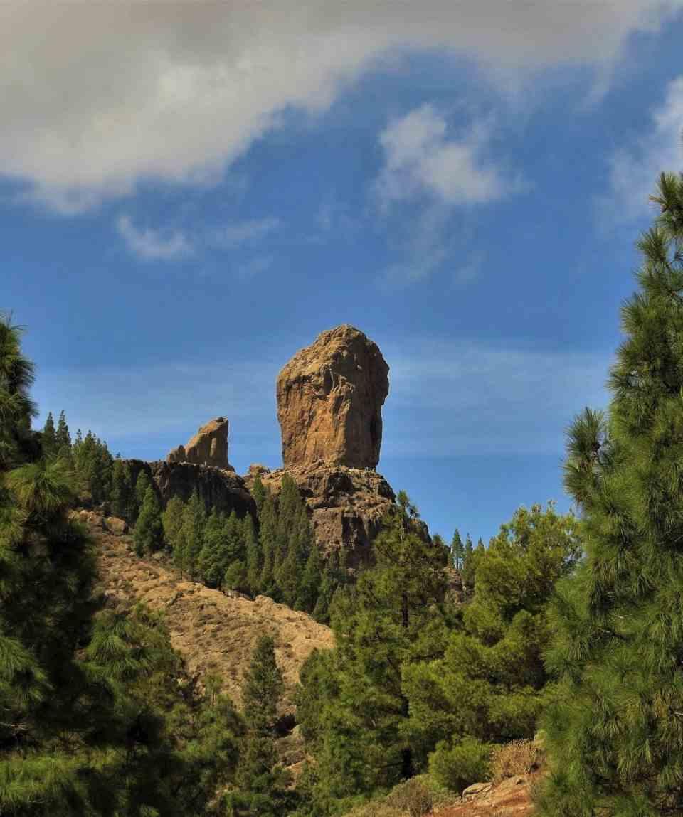 Excursión en Bus - Las Cumbres de Gran Canaria