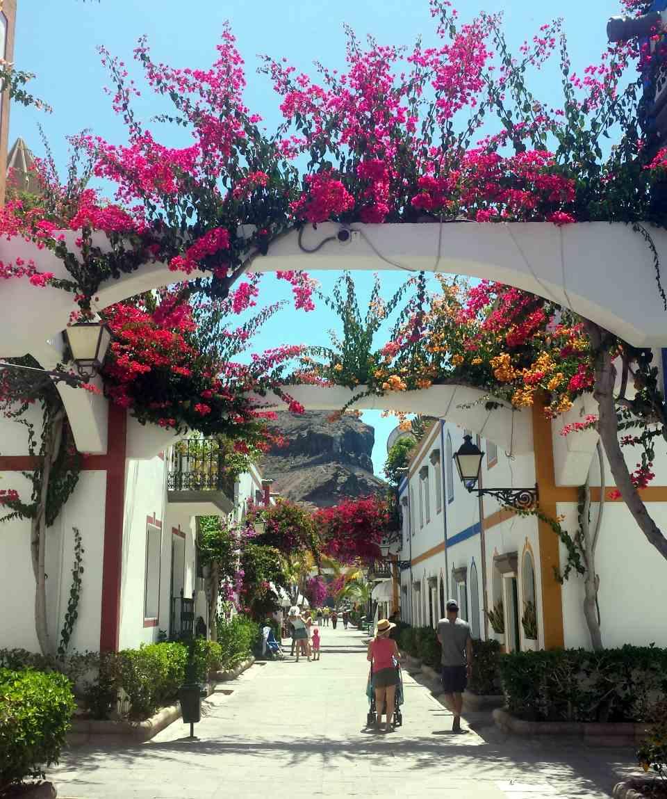 Excursión en Bus - Los Tesoros de Gran Canaria