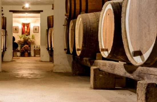 Bus Tour Wines and Landscapes Gran Canaria