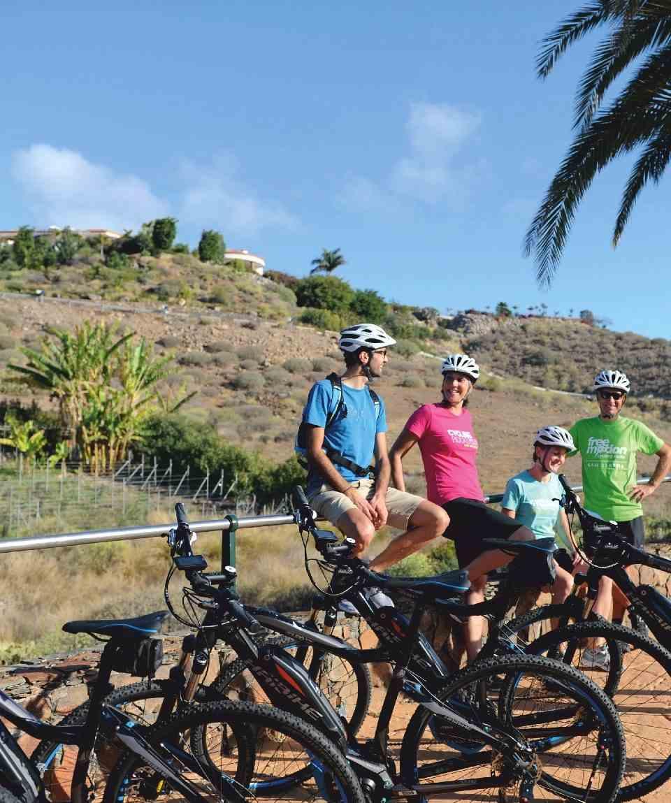 Excursión en E-Bike - Ayagaures Gran Canaria