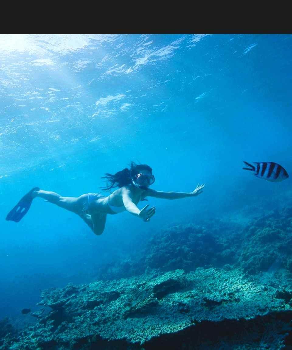 Schnorcheln - Snorkeling - Gran Canaria