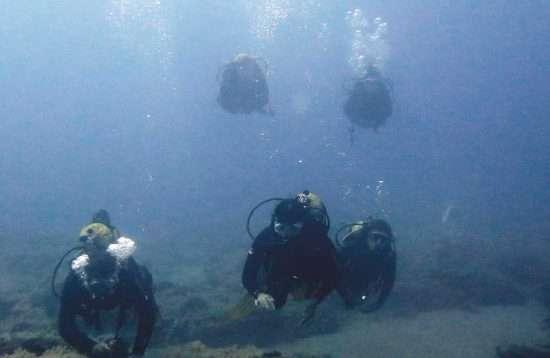 Dives Gran Canaria