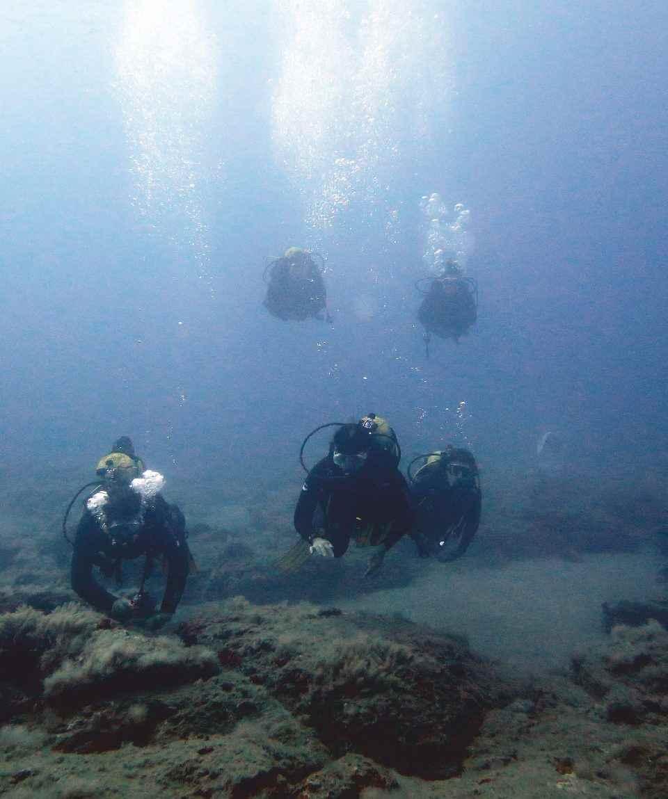 Tauchausflug - Dives - Gran Canaria