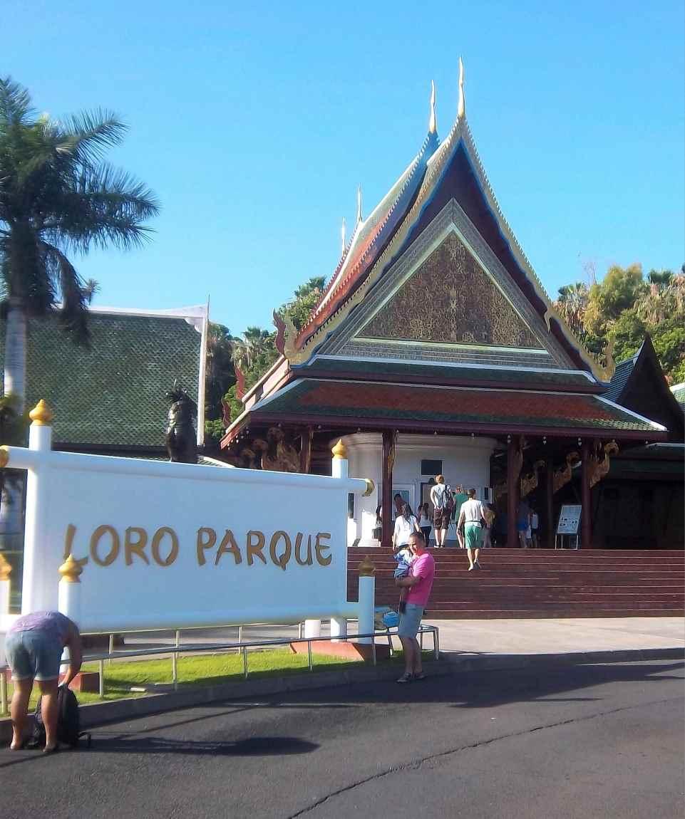 Ausflug Von Gran Canaria Zum Loro Park Auf Teneriffa - Day Trip From Gran Canaria To Loro Park On Tenerife