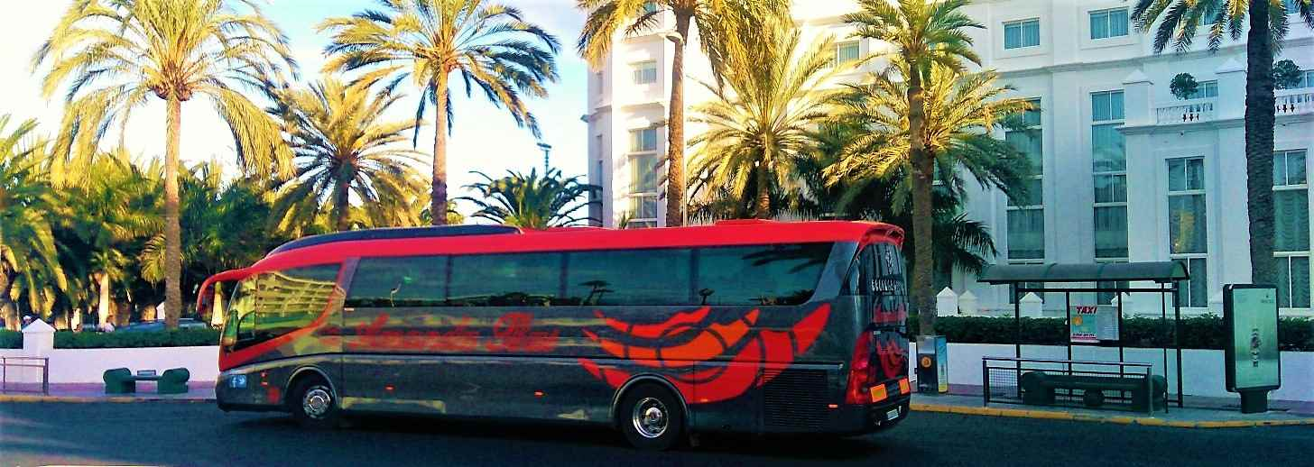 Gran Canaria Tours in Buses