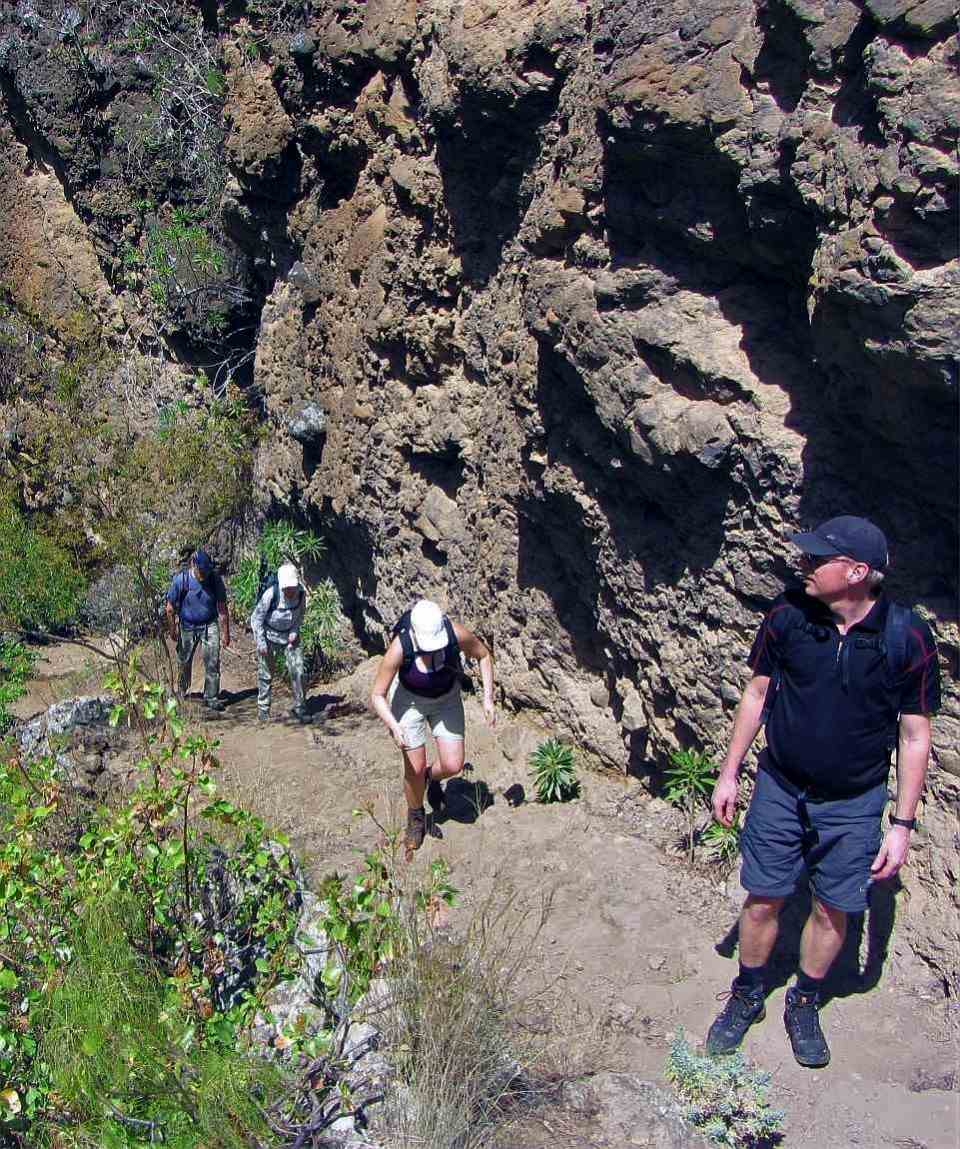Hiking Azuaje Valley Gran Canaria