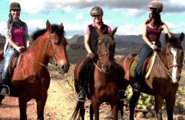 Raus mit dem Pferd