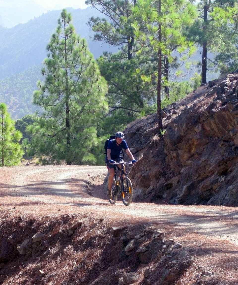 Candelilla Mountain Bike Tour Gran Canaria