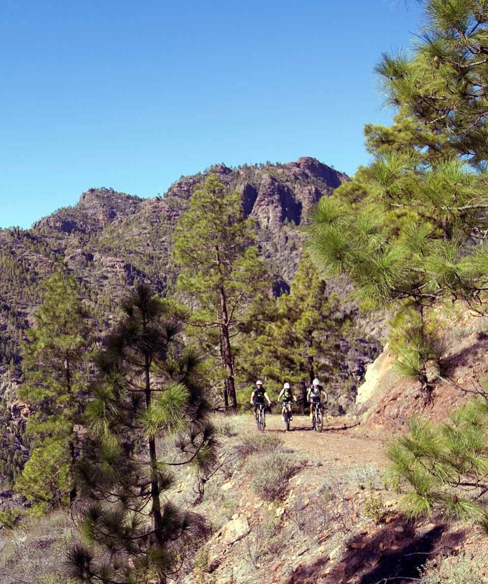 Tirajana Mountain Bike Tour Gran Canaria