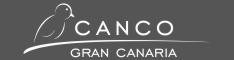 CANCO Gran Canaria - Excursions and Sights